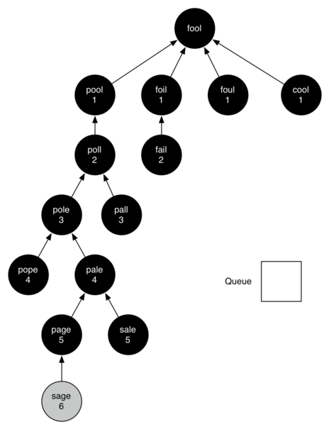 Final breadth first search tree
